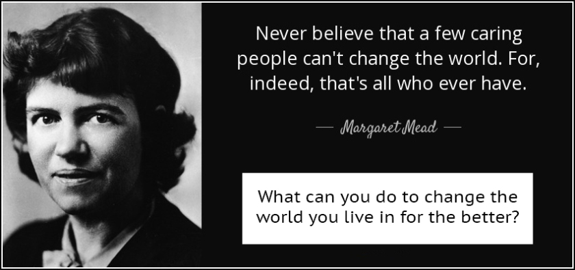 quote-never-believe-that-a-few-caring-people-can-t-change-the-world-for-indeed-that-s-all-margaret-mead-19-60-04 copy.jpg