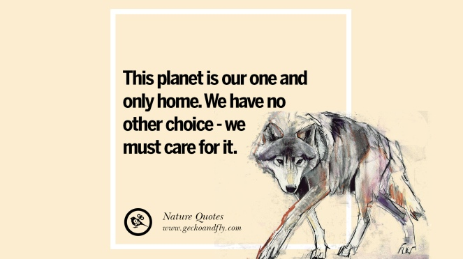 nature-earth-quotes-25.jpg